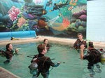 PADI Open Water Diver - Learn How to Dive: Sunday Start - Frog Dive