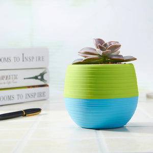Cute and Mini Flower Pots for Succulents