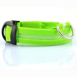 Safety Glowing LED Pet Collar-TrendyVibes.CO