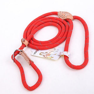 Reflective Nylon Leash for Big Dogs-TrendyVibes.CO