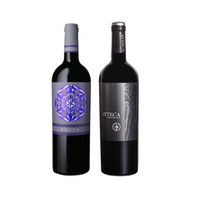Load image into Gallery viewer, Zoom Gil Family Spanish Wine Tasting Pack