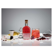 Load image into Gallery viewer, Zoom On the Rocks Cocktail Tasting Pack
