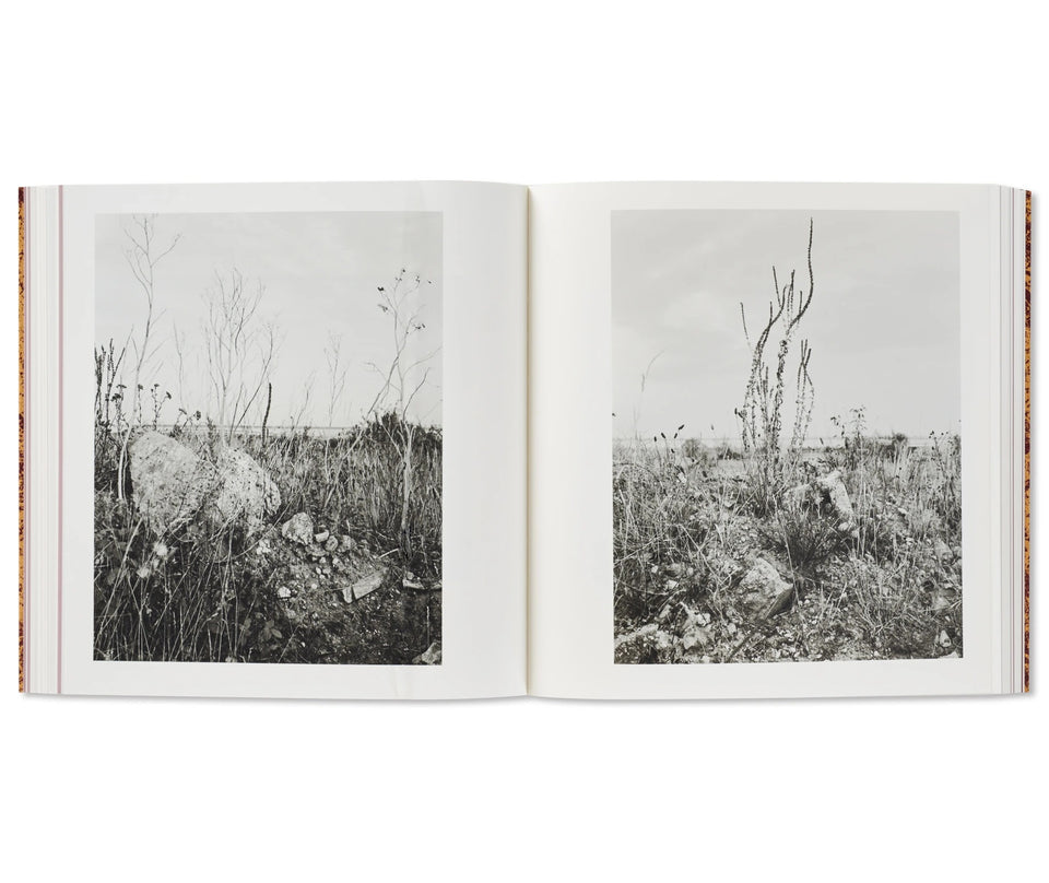 Vanessa Winship: AND TIME FOLDS [SIGNED]