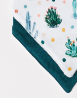 Infant Cactus Print Bib 2-Pack