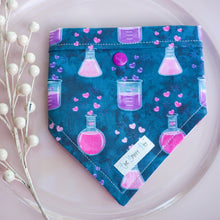 Load image into Gallery viewer, Love Potion // Reversible Bandana