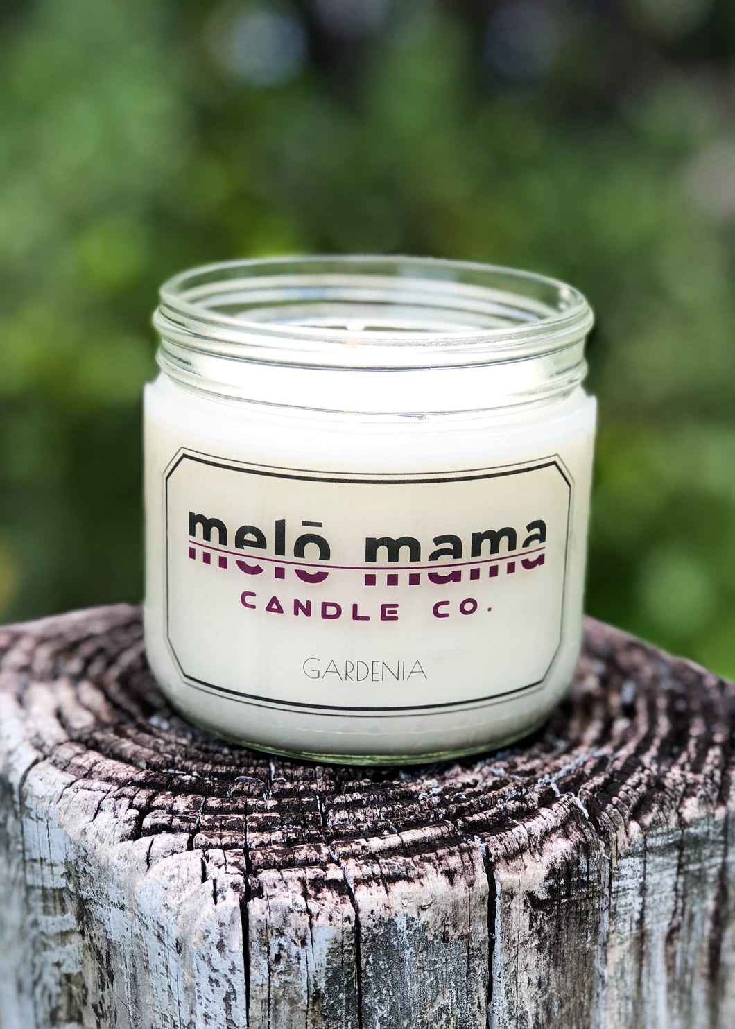 Gardenia 12oz Scented Soy Candle