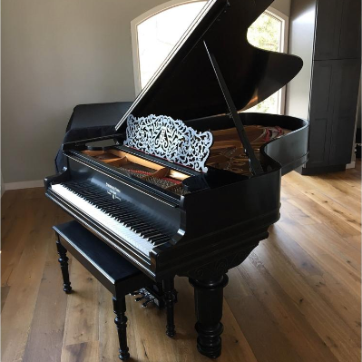 Steinway Model B Piano Henry Ziegler Limited Edition