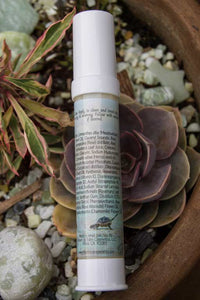 back label of airless face lotion bottle with ingredients list and label showing beach scene with baby turtles crawling towards ocean, airless bottle laying on a succulent rosette