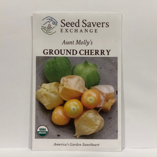 Organic Aunt Molly's Ground Cherry