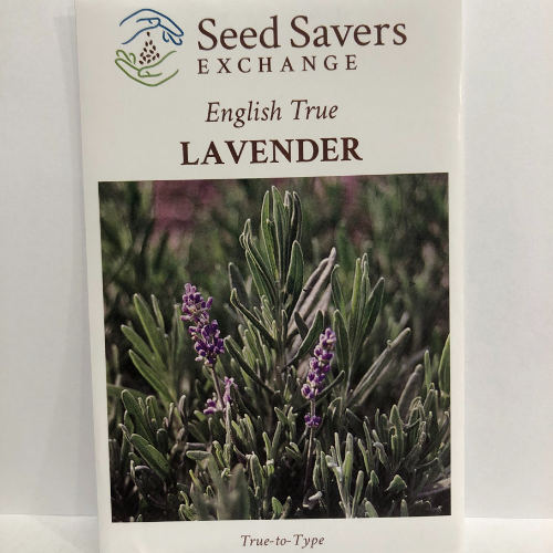 English True Lavender, Heirloom