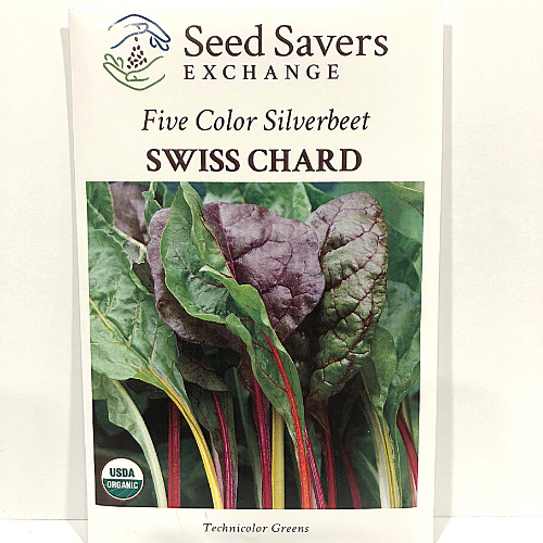 Organic Five Color Silverbeet Swiss Chard, Heirloom