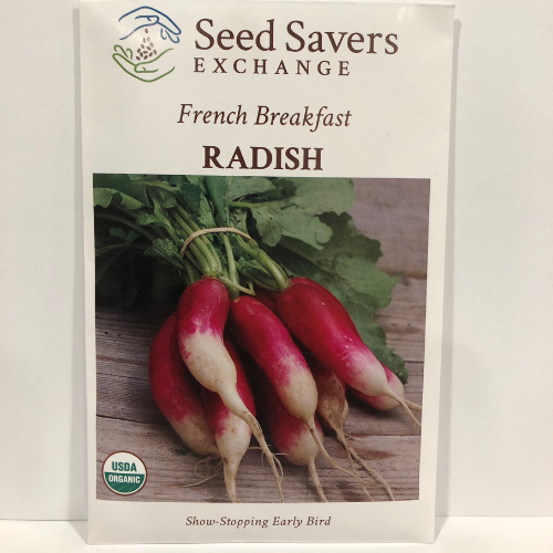 Organic French Breakfast Radish, 1870 Heirloom