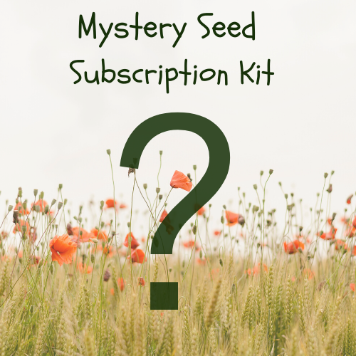 Monthly Mystery Seed Collection