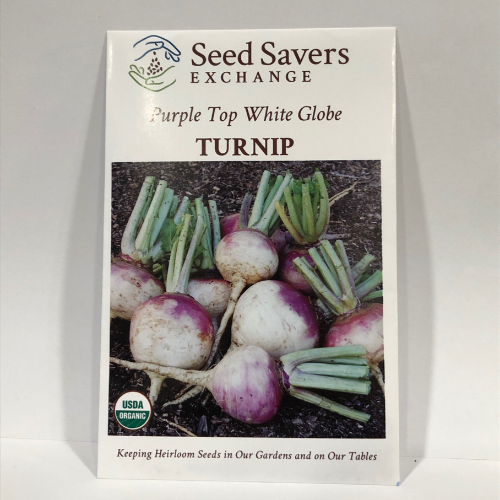 Organic Purple Top White Globe Turnip, 1885 Heirloom