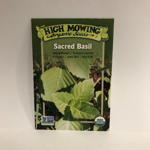 Organic Sacred Basil, Heirloom