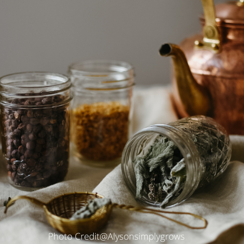 Organic Herbal and Medicinal Tea Collection