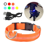 USB Rechargable Dog LED Flashing Collar Outdoor Anti-lost Night Safety For Dog Walking - Bentley York