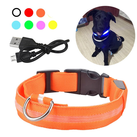 USB Rechargable Dog LED Flashing Collar Outdoor Anti-lost Night Safety For Dog Walking