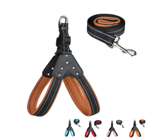 Reflective Dog Harness and Leash Shock Absorbing Set