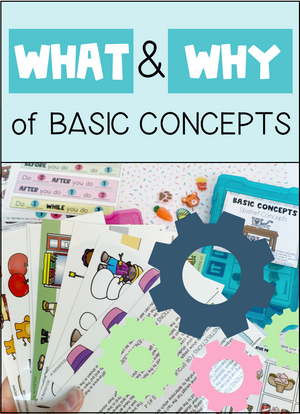 The WHAT and WHY of Basic Concepts