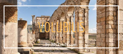 volubilis-morocco-travel-guide