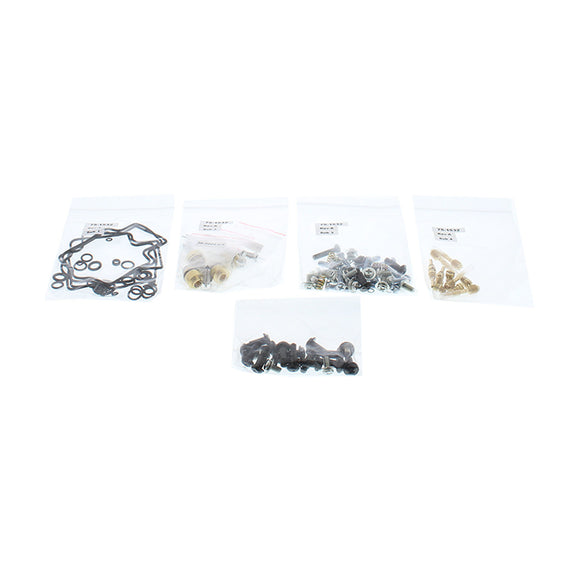 CARBURETTOR REBUILD KIT 26-1697