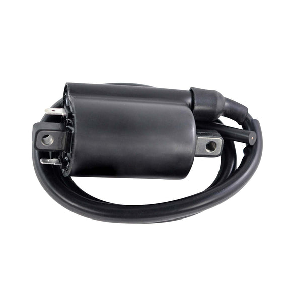 EXTERNAL IGNITION COIL ASSTD KAW / SUZ 2001-2020 (RM06176)