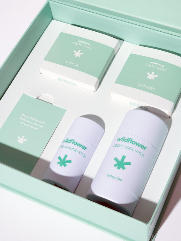 Wildflower Holiday Kit