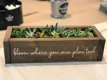 "Load image into Gallery viewer, 5/22/2019 - PUBLIC WORKSHOP - ""Wood Box and Succulent Workshop"" (HAPPY HOUR 6-6:30pm and Workshop 6:30pm-8:30pm) - Downtown Kirkland"