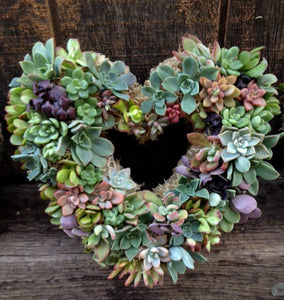 "5-9-2020 - Mother's Day SPECIAL Workshop -   ""SUCCULENT HEART WREATH and BUBBLY"" - 2:00pm - 4:00PM -  (DOWNTOWN KIRKLAND)"