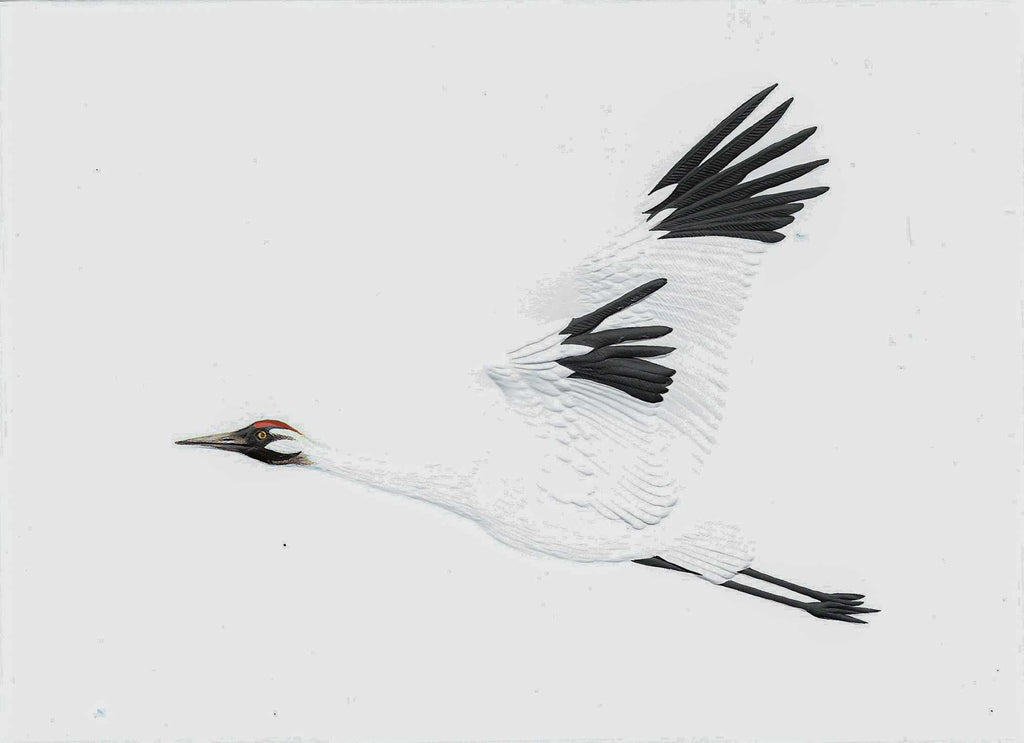 Whooping Crane - Red & Black on White Embossed Card