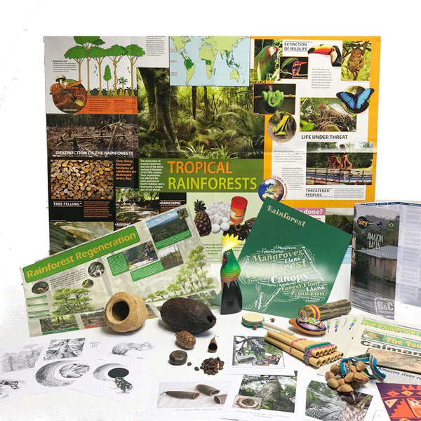 Rainforest Classroom Resource Box:Primary Classroom Resources