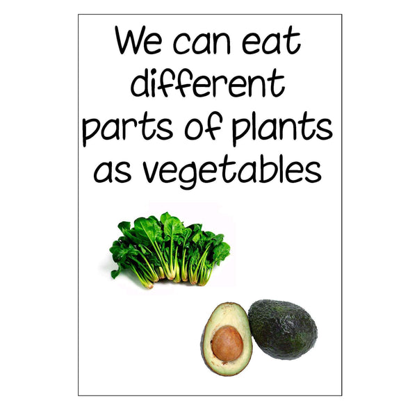 Vegetables Display Pack:Primary Classroom Resources