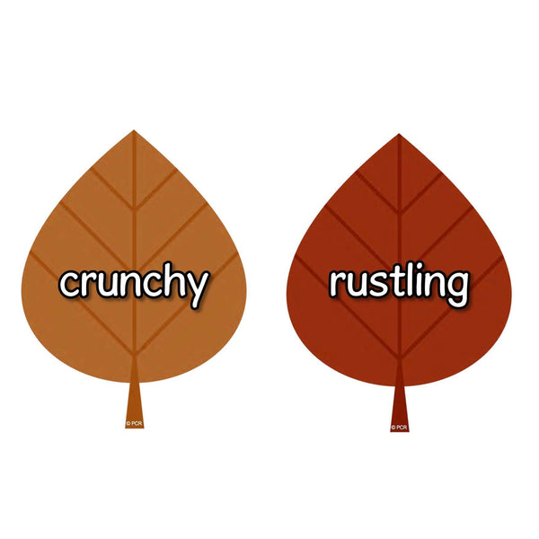 Autumn Vocabulary on Leaves:Primary Classroom Resources