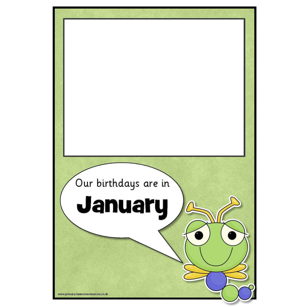 Birthday Bugs Poster Pack:Primary Classroom Resources