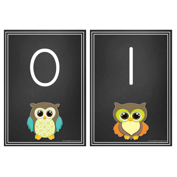 Blackboard Style Number Cards 0-20 Owl Theme:Primary Classroom Resources