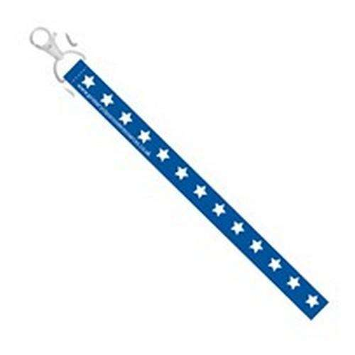 Blue Lanyard:Primary Classroom Resources