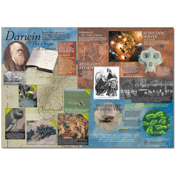 Darwin and The Origin of Species Poster:Primary Classroom Resources