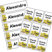 EDITABLE Name Tray & Coat Peg Labels Bundle:Primary Classroom Resources,Digital download / Emoji