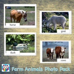 Farm Animals Photo Pack:Primary Classroom Resources,Digital download