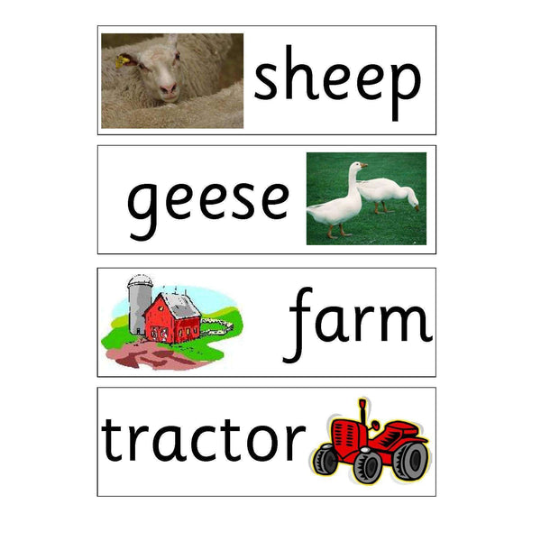 Farm Vocabulary Flashcards:Primary Classroom Resources