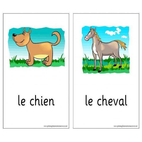 French Vocabulary Cards - Animals