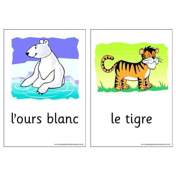 French Vocabulary Cards - Wild Animals:Primary Classroom Resources