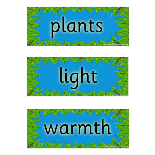 Helping Plants Grow Well Vocabulary Cards