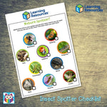 Insect Spotting Checklist:Primary Classroom Resources