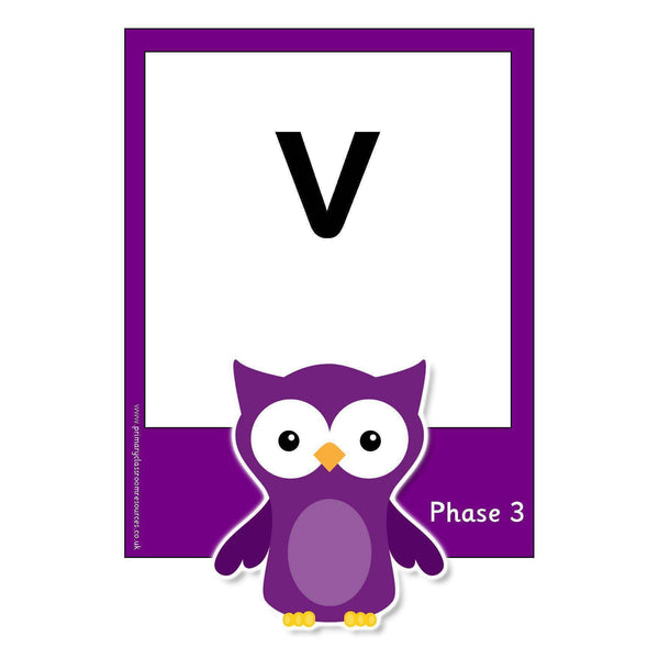 Large Owl Phase 3 Letters and Sounds Flashcards