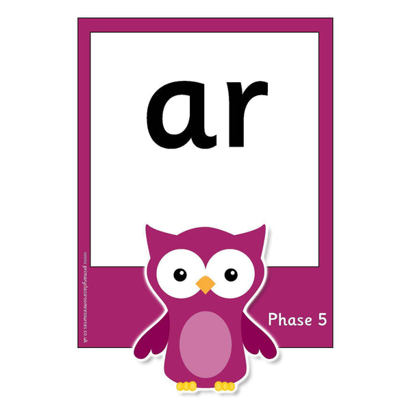 Large Owl Phase 5 Letters and Sounds Flashcards