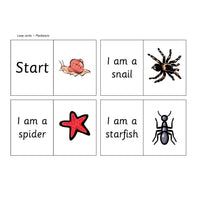 Minibeast Loop Cards:Primary Classroom Resources