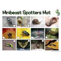 Minibeasts Spotters Mat:Primary Classroom Resources