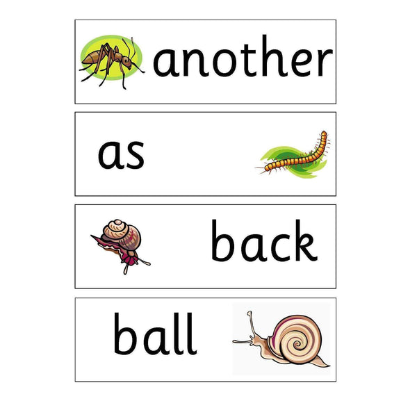 Minibeasts Year 1 and 2 Keywords